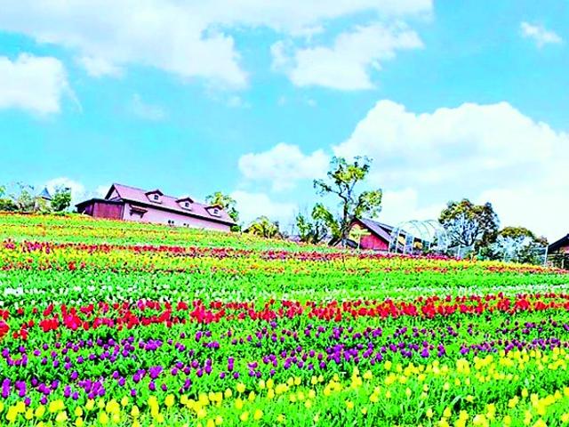 堺・緑のミュージアム ハーベストの丘   大阪観光コンシェルジュ