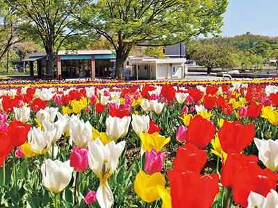 ◆自然文化園