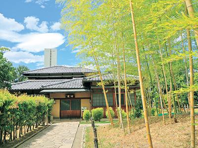 ◆堺市茶室 伸庵